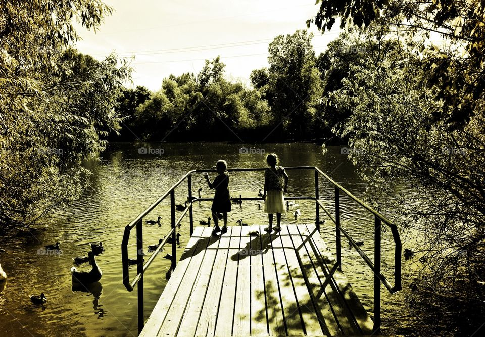 Children at the Pond. Two children with Ducks at a pond.