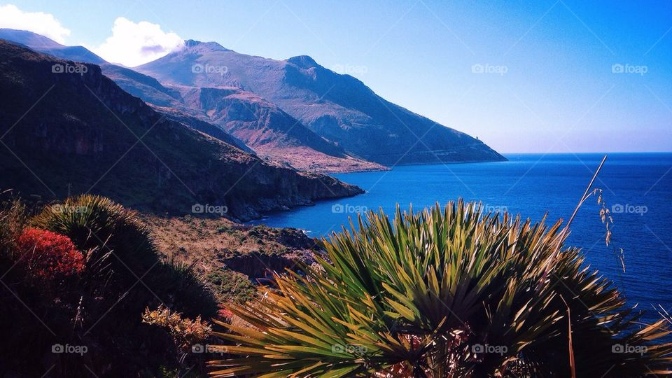 Sicily's Finest