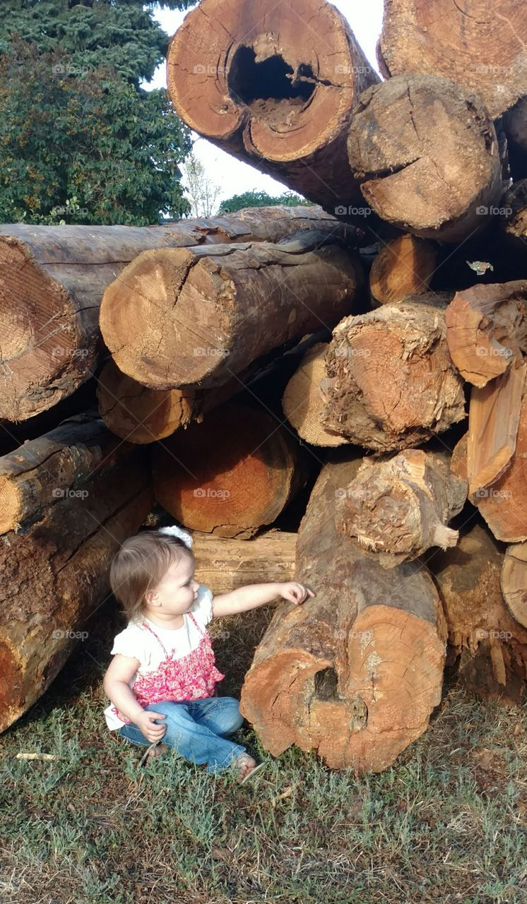 Little girl sitting on grass and touching wooden log