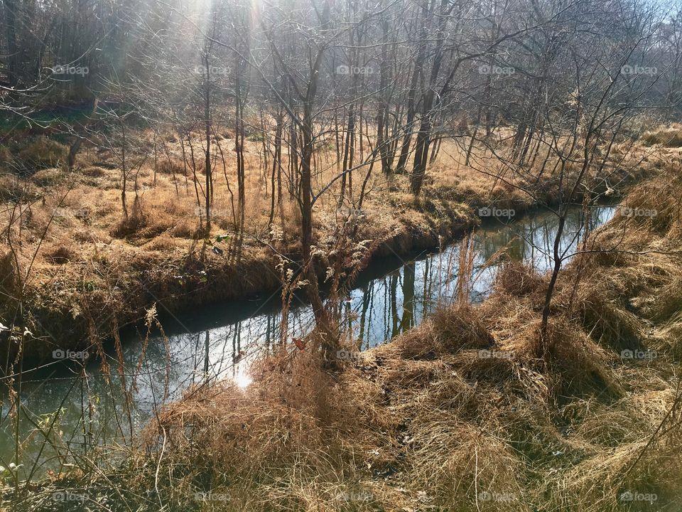 Golden grass split by a quaint little creek