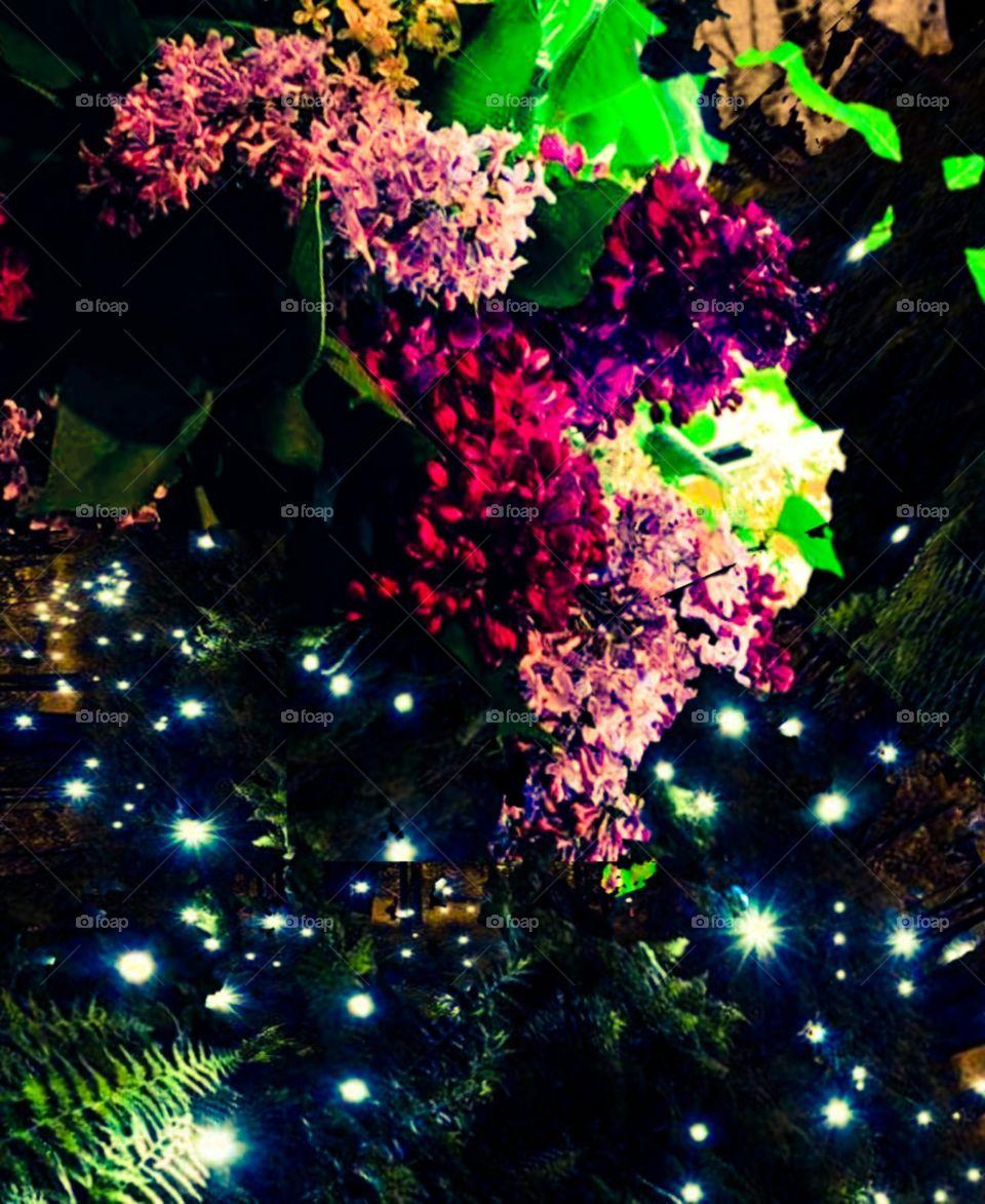 lilacs fireflies Darkness