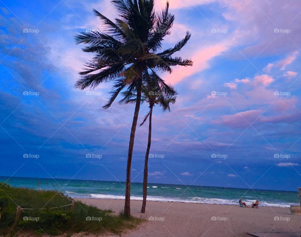 Miami beach sunset and scenery