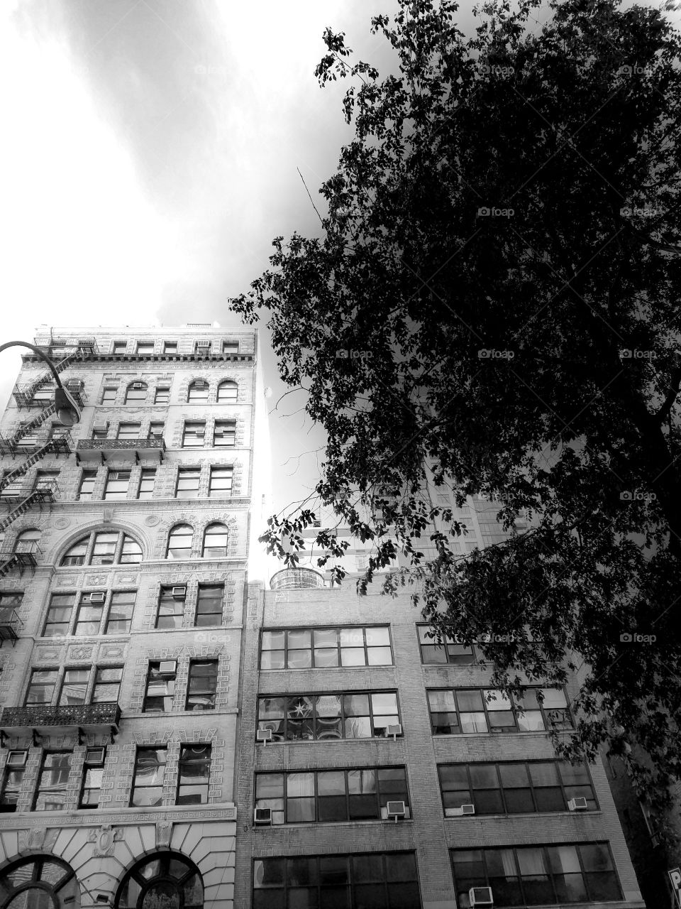 Building in Flatiron on 23rd street - Lower Manhattan. NYC Architecture. Black and White Filter.