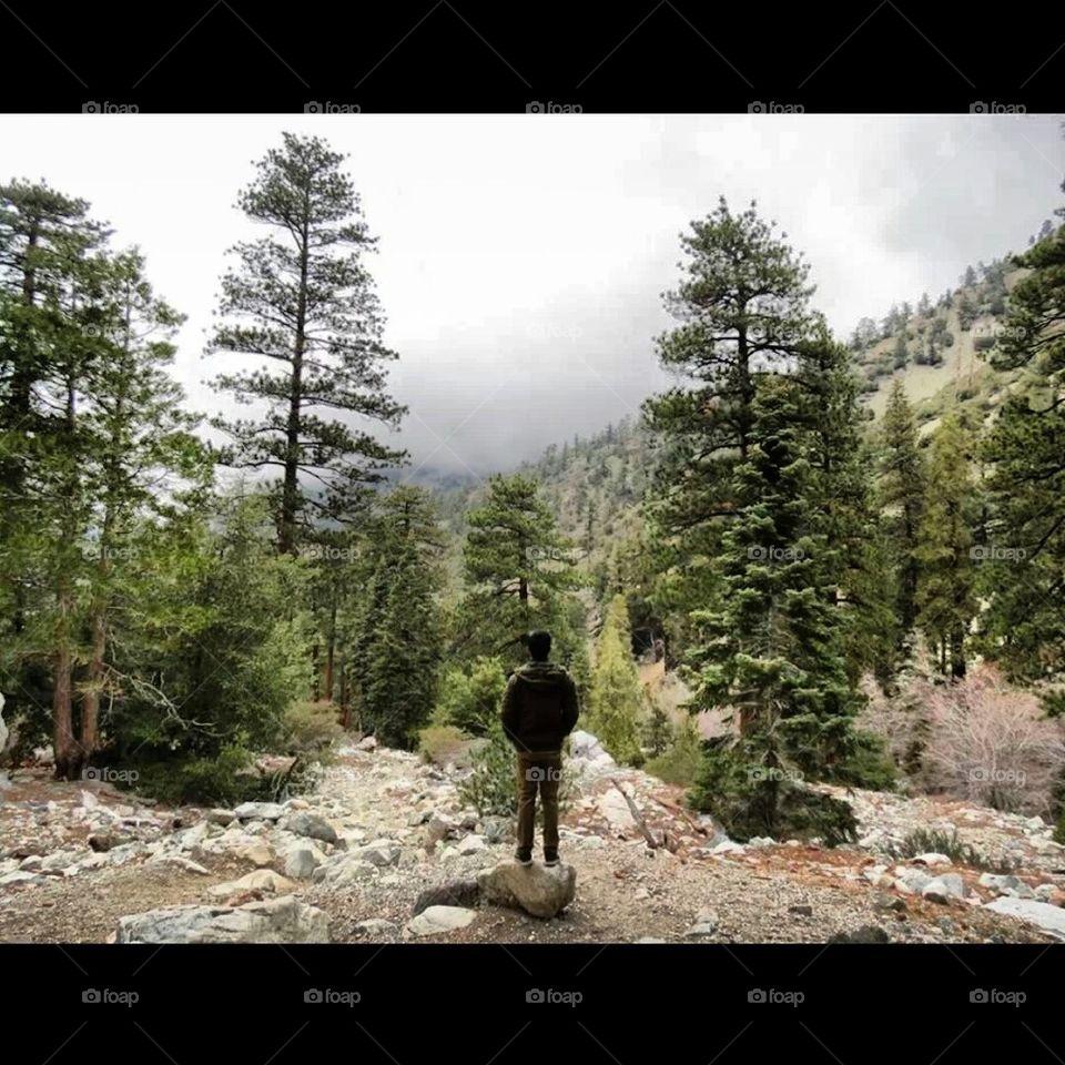 Into The Wild | johnerickkk, mother nature, appreciate, release