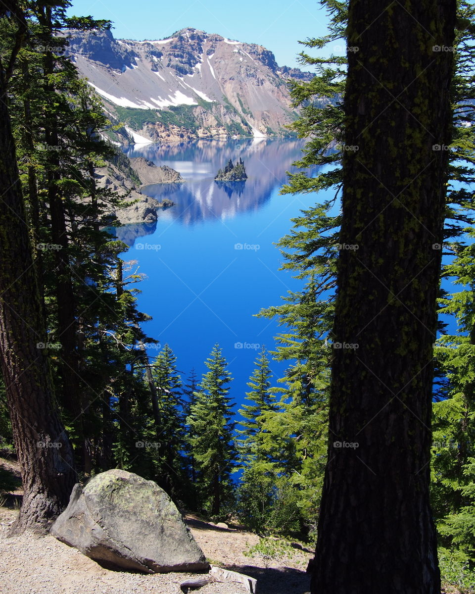 The rugged Phantom Ship seen through beautiful fir trees at Crater Lake National Park in Southern Oregon on a sunny summer morning.
