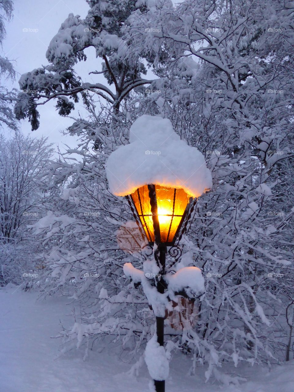 Street light covered with snow