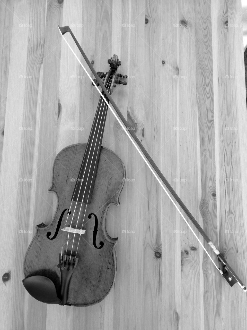 blach and white violin II