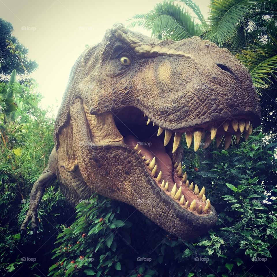 T Rex. Found in Jurassic Park at Universal Studios, FL.