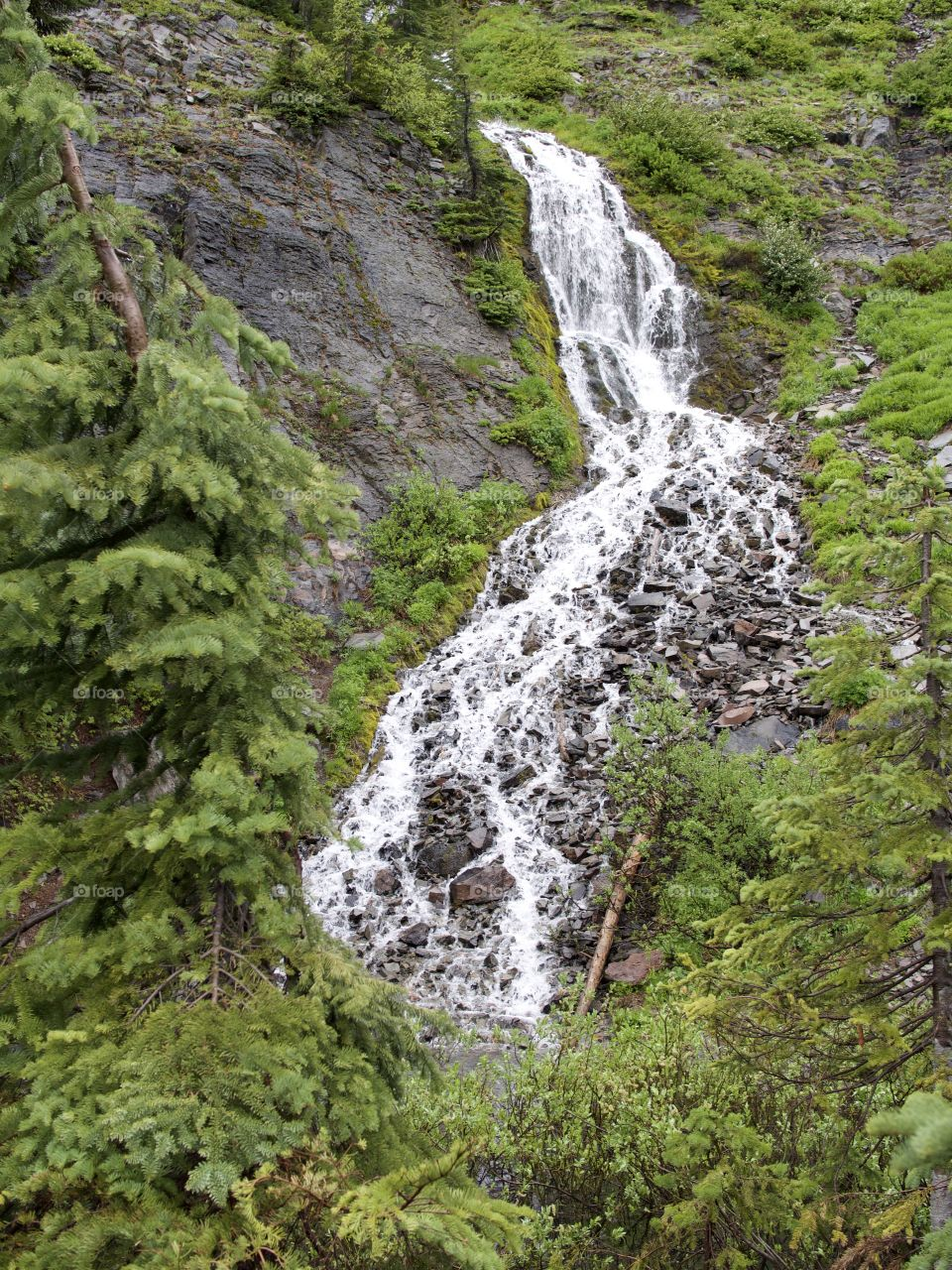 The cold waters of Vadea Falls in Crater Lake National Park look like lightening forking down the mountainside.