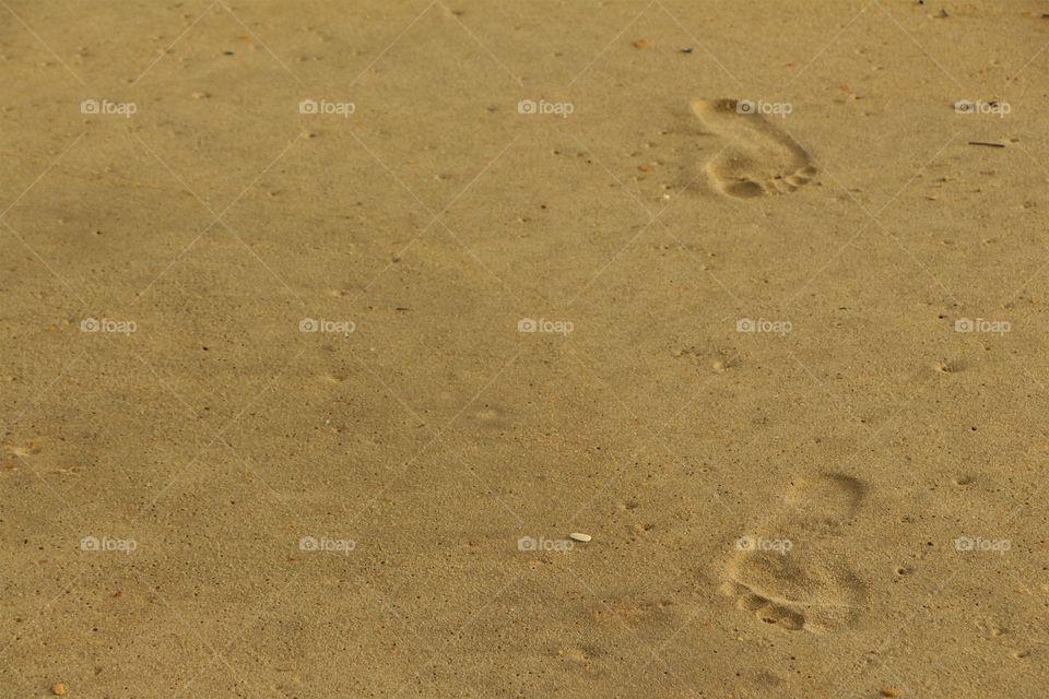 Sandy prints