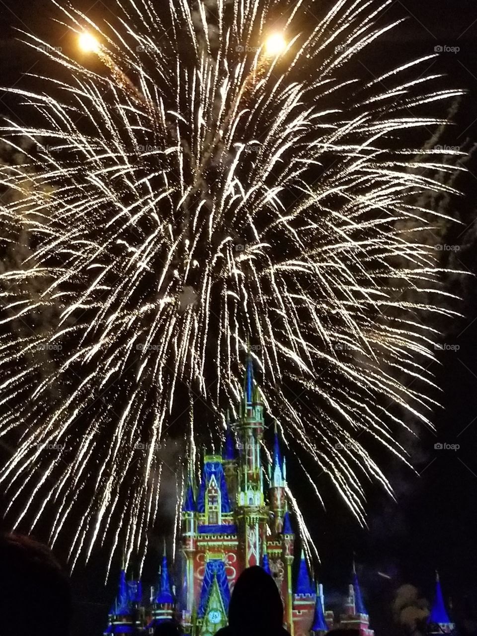 Magical fireworks picture above Magic Kingdom