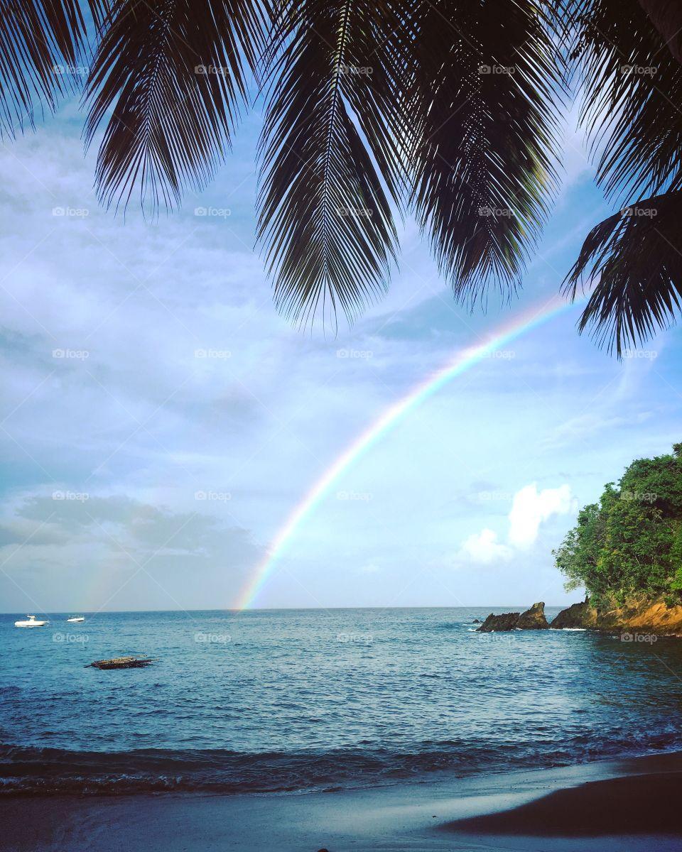 Tobago rainbow