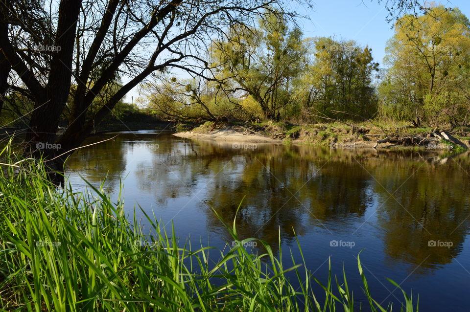 River border between Poland and Ukraine