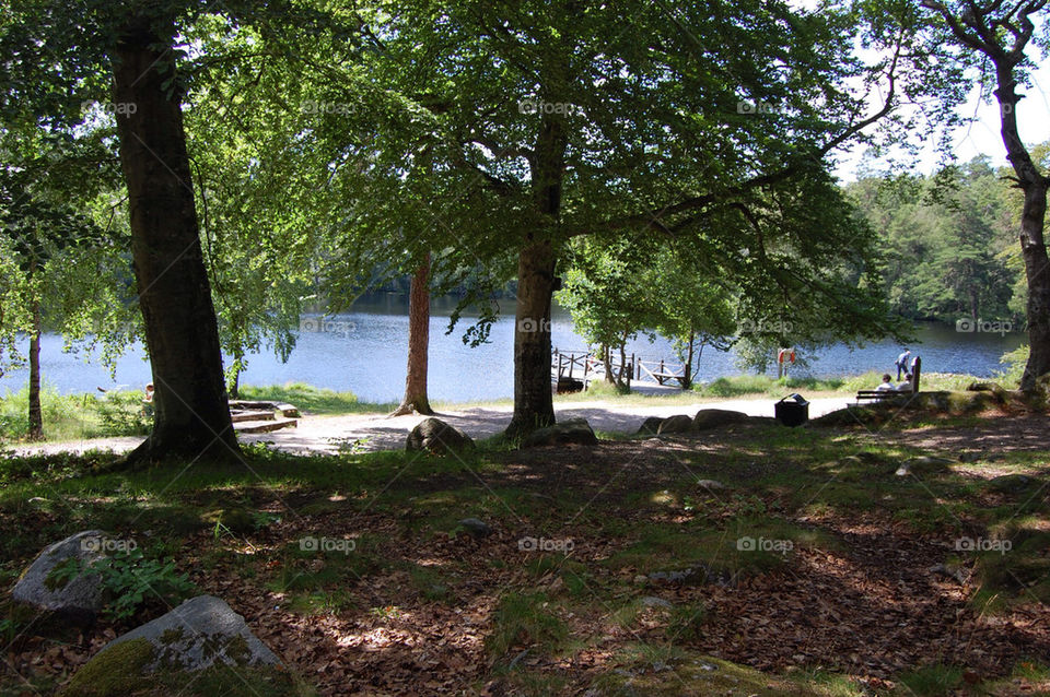 Lake in Ronneby Sweden
