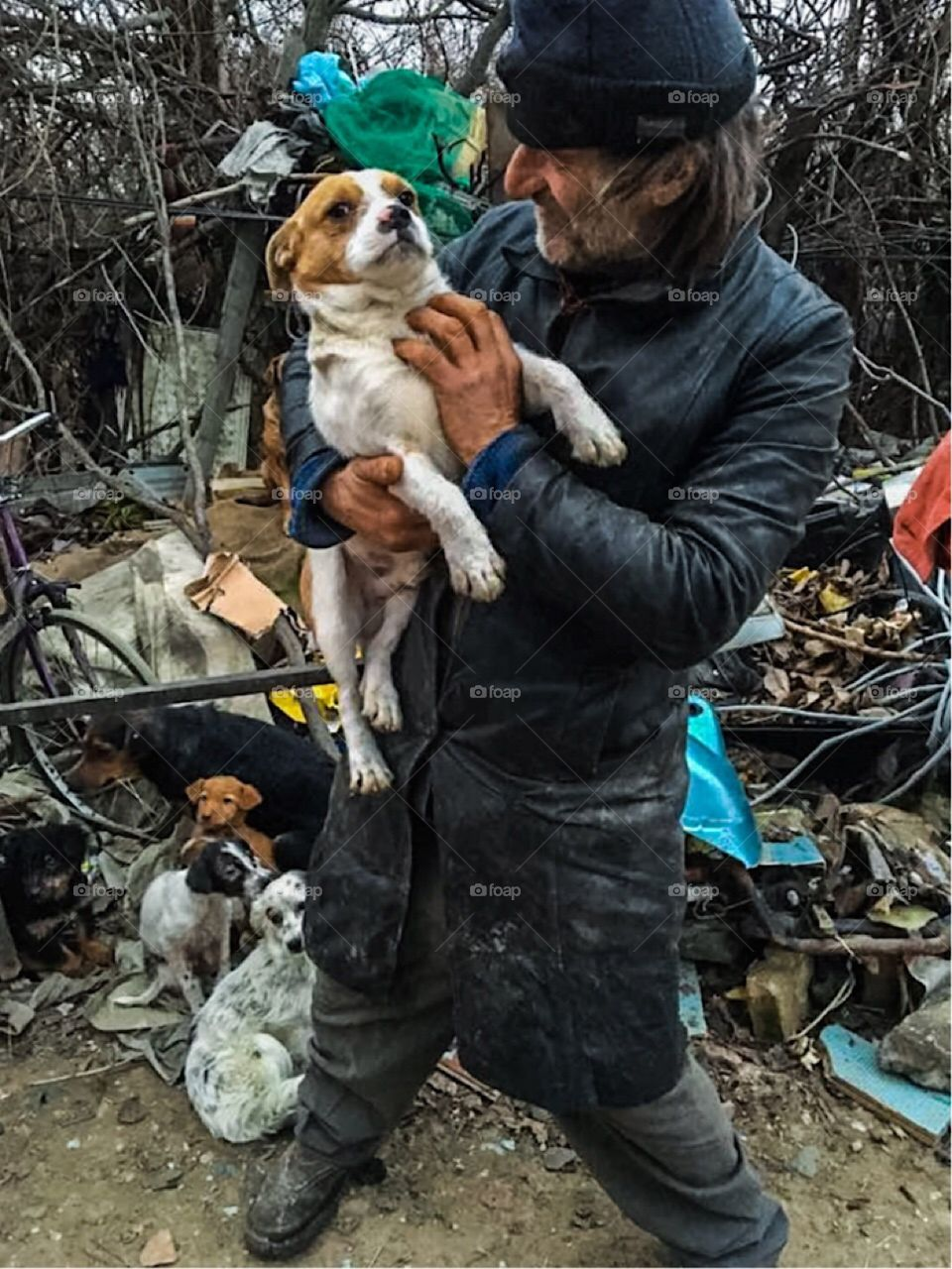 homeless man with his dogs, serbia.