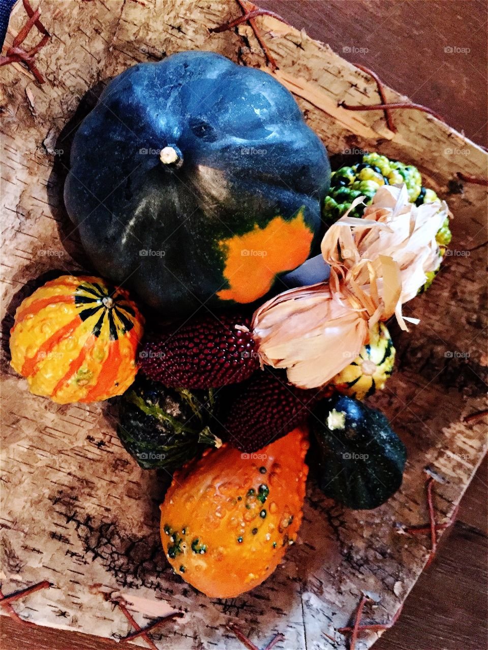 Different types of pumpkins for thanksgiving