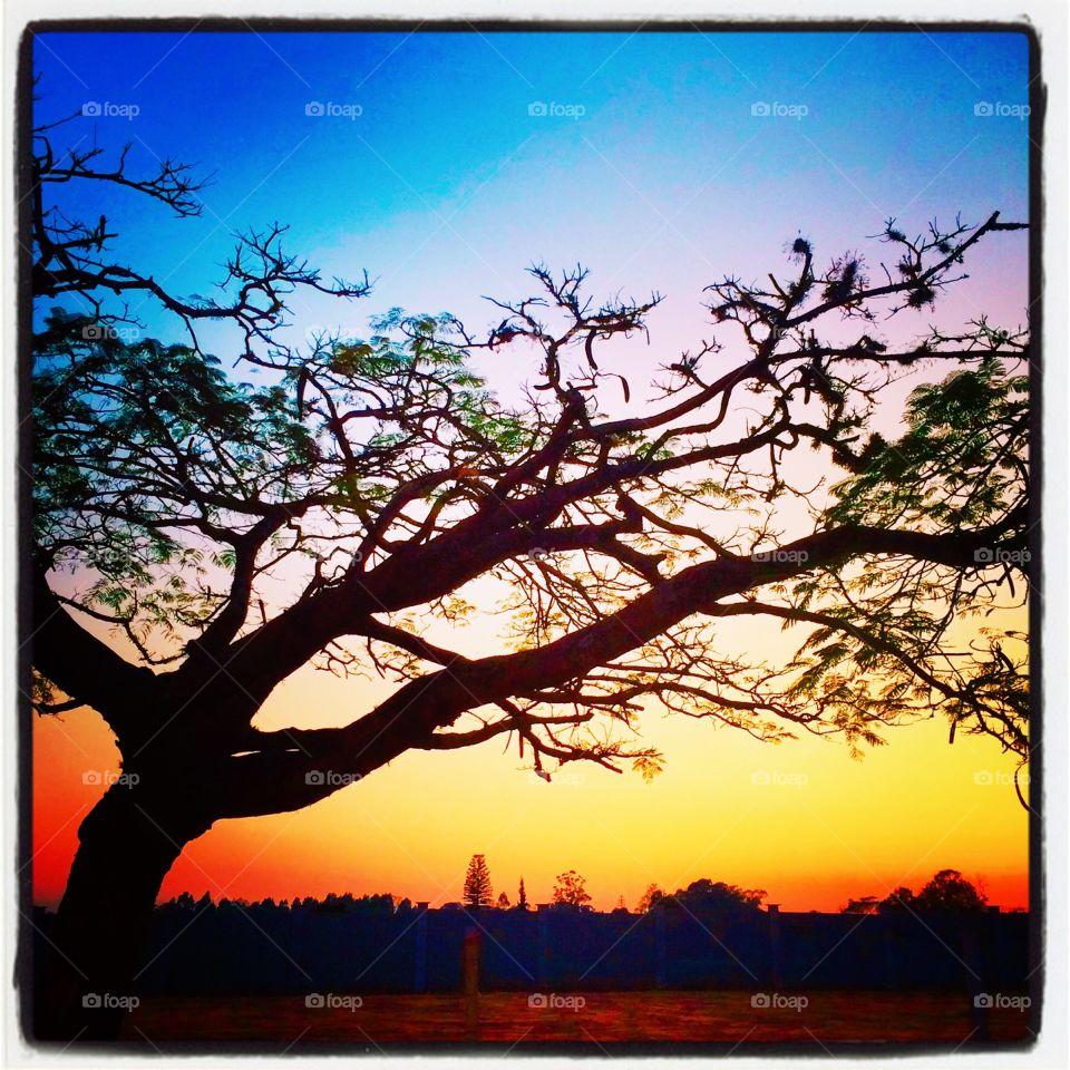 🌅Por enquanto, para o lado de #Jundiaí, #céu limpo. Para o lado de #Itupeva, #nuvens escuras. Vai ou não chover? Ótima #QuartaFeira a todos. 🍃 #sol #sun #sky #photo #nature #manhã #morning #alvorada #natureza #horizonte #fotografia #paisagem #inspiração #amanhecer #mobgraphy #FotografeiEmJundiaí