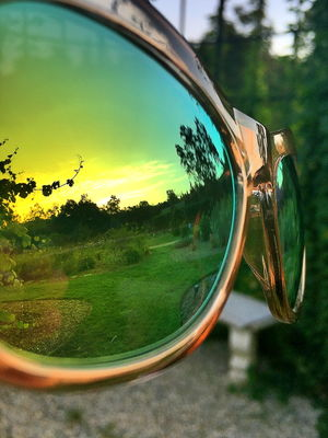 Nature reflected in goggle