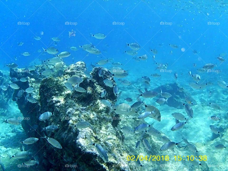 undersea of kas Turkey