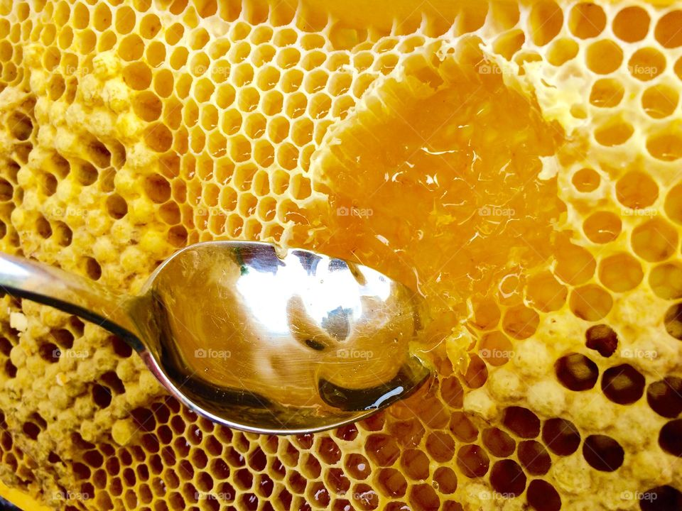 Honeycomb with spoon