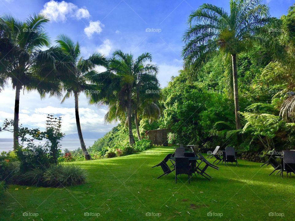 On our island drive around the breathtaking island of Tahiti