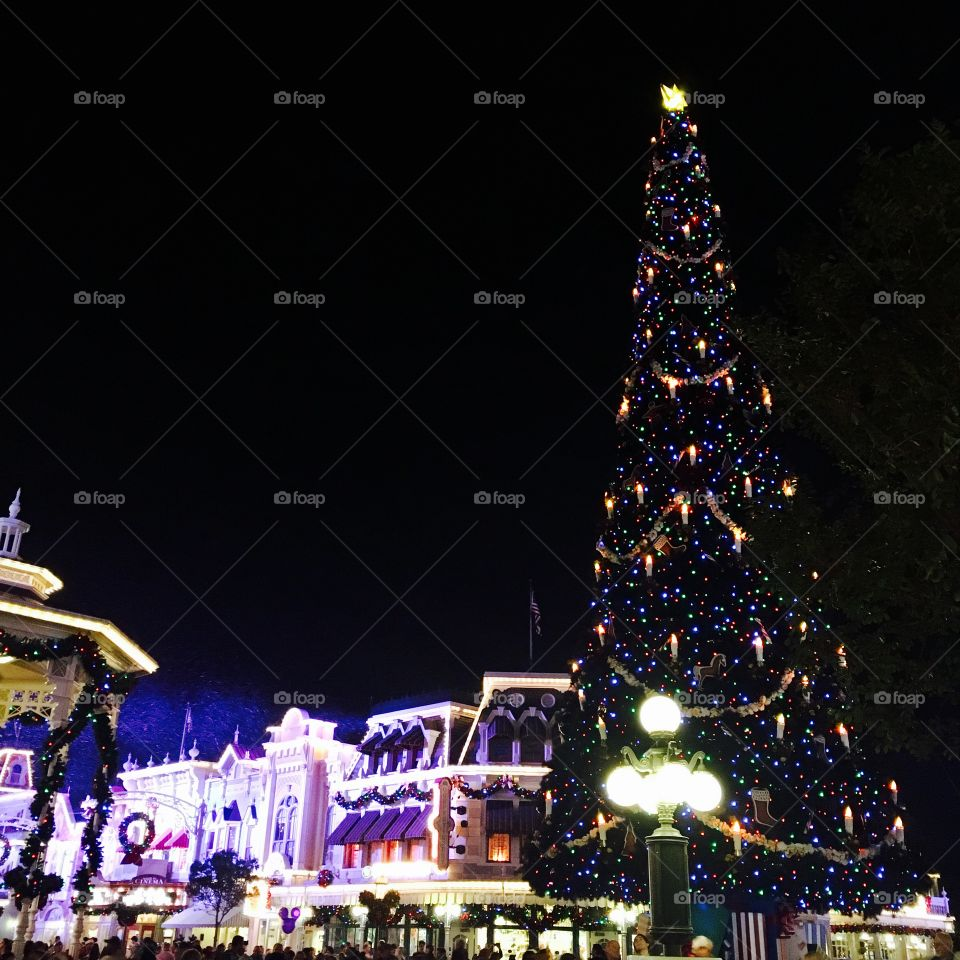 Disney's Magic Kingdom at Christmas