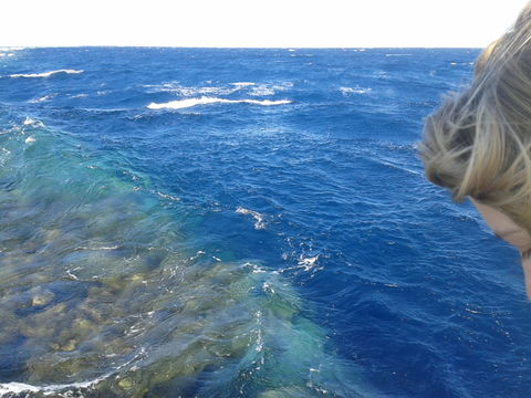 My girls hair and red sea. red sea.... Egypt...