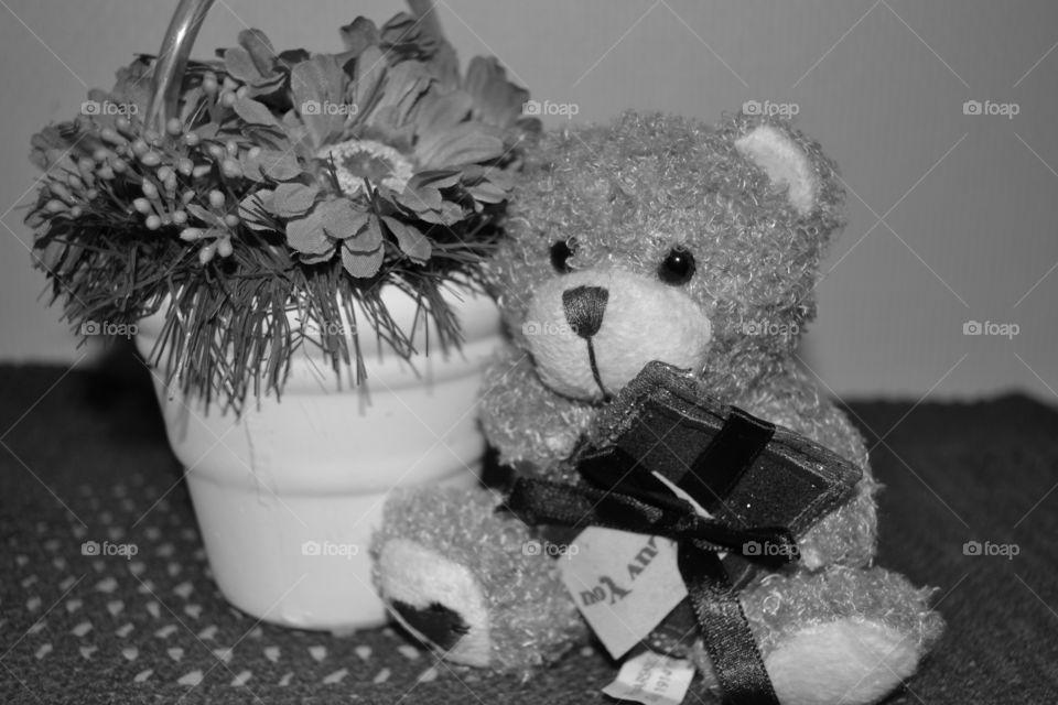 Tedy bear/Valentines day