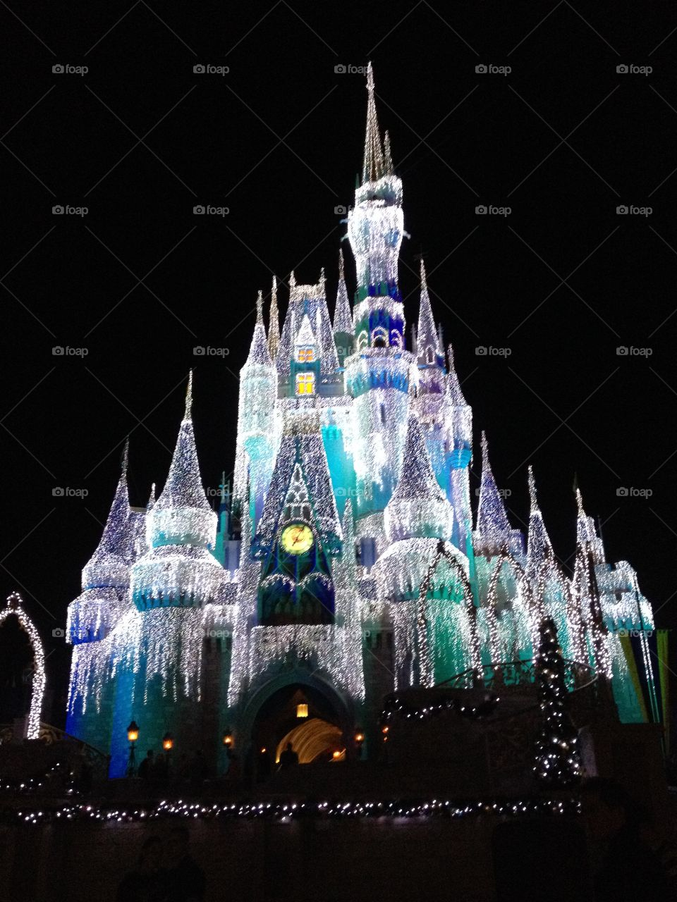 Walt Disney World Holiday Lights