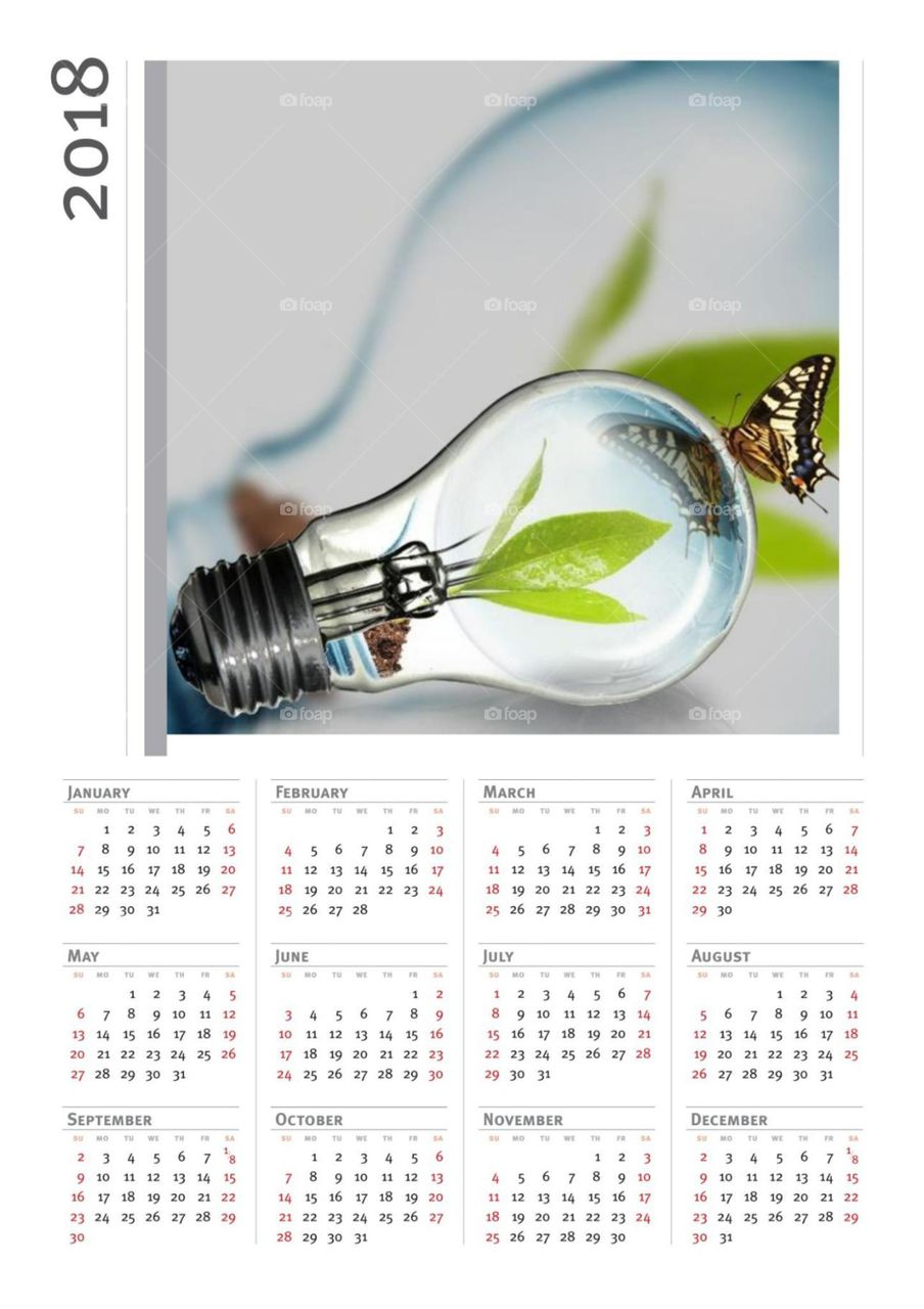 Glühbirne Kalender 2018