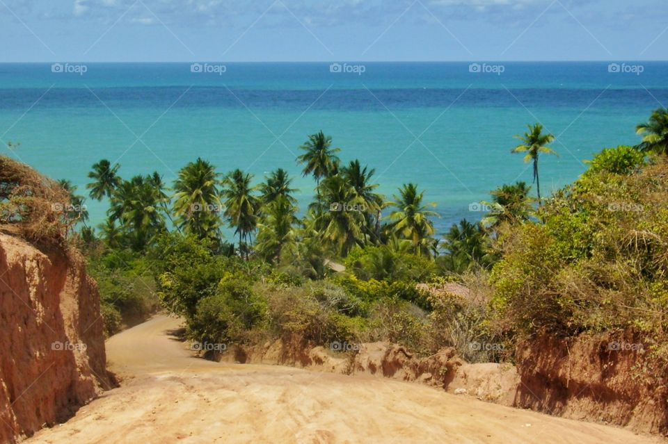 Way to the paradise, Coqueirinho beach, in the city where the sun rises first in America!