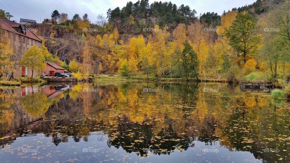 Photos taken in a little place called Berger, Norway