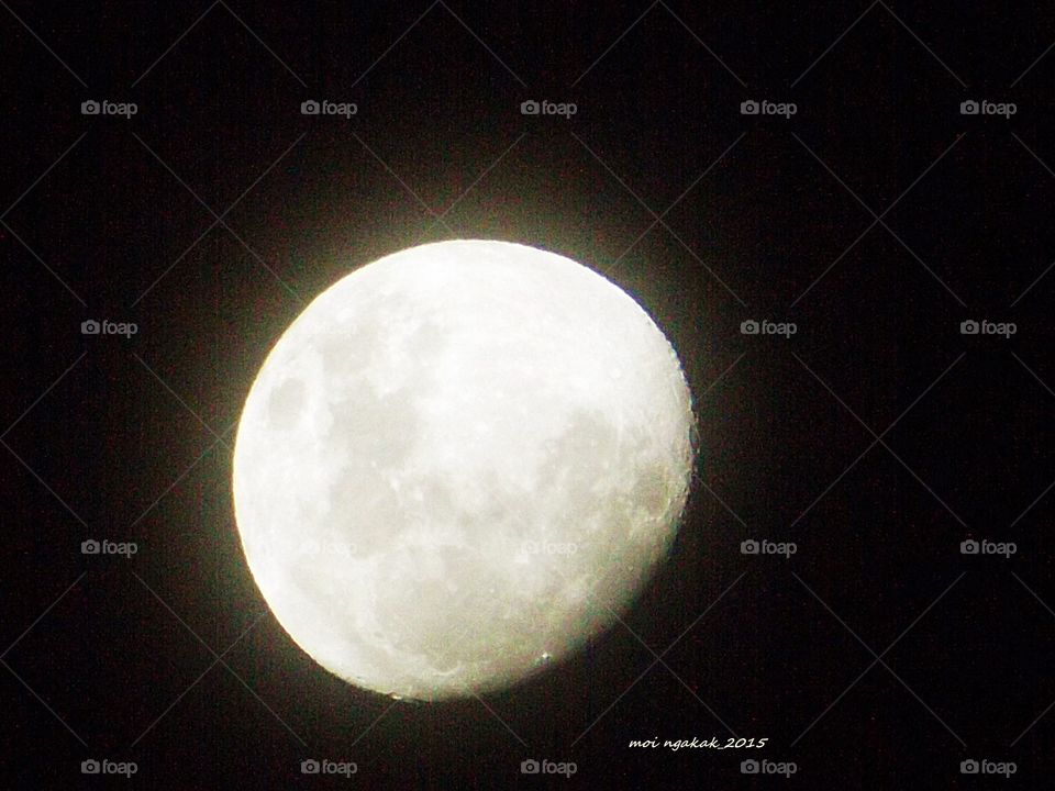MoonLight. in silence of love
