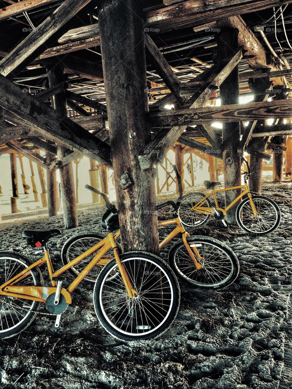 Bicycles parked under the bridge
