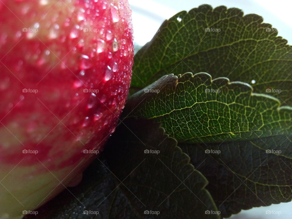 drops of water in the red apple and green leaves