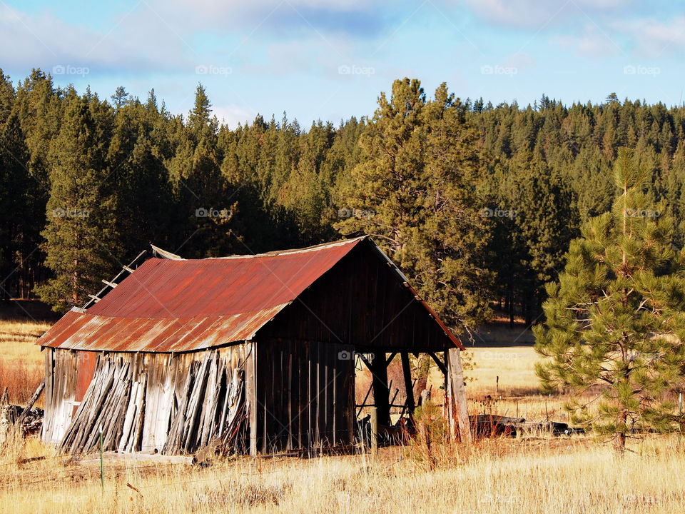 An old rusted and rotting barn barely standing in a rural pasture in Central Oregon on a sunny winter afternoon.