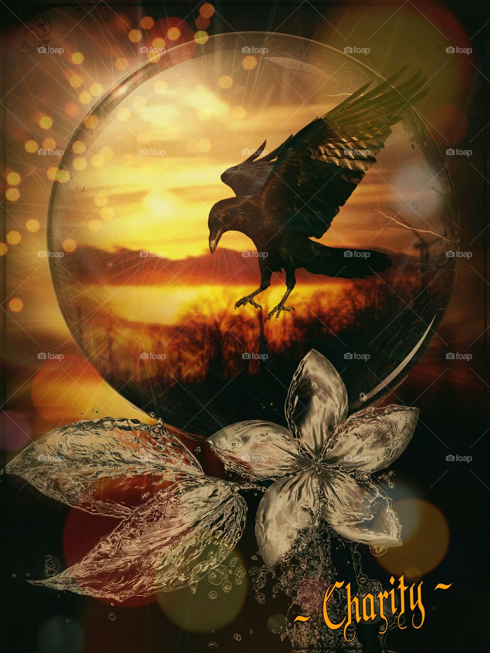 digital art creation of bird and sunset