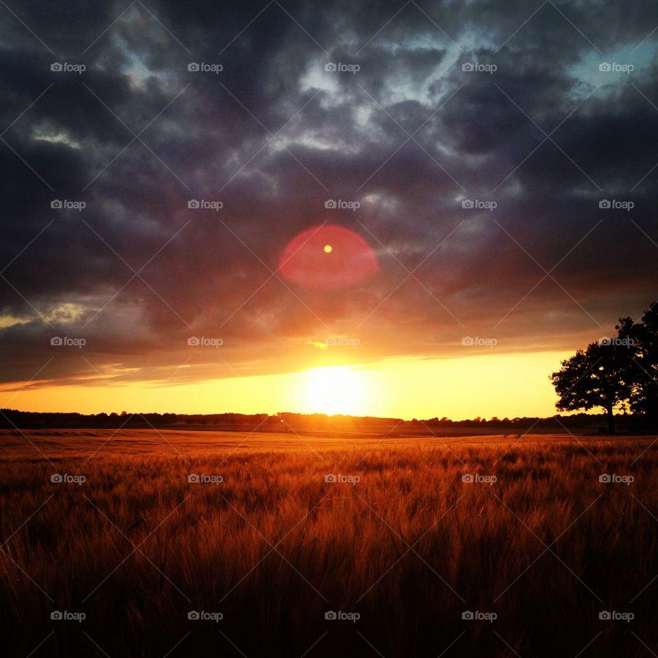 Sunset countryside of Sweden. Solnedgång - livet på landet