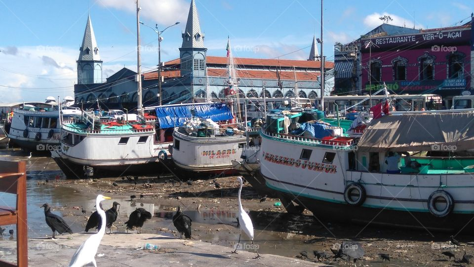 ver-o-peso market boats