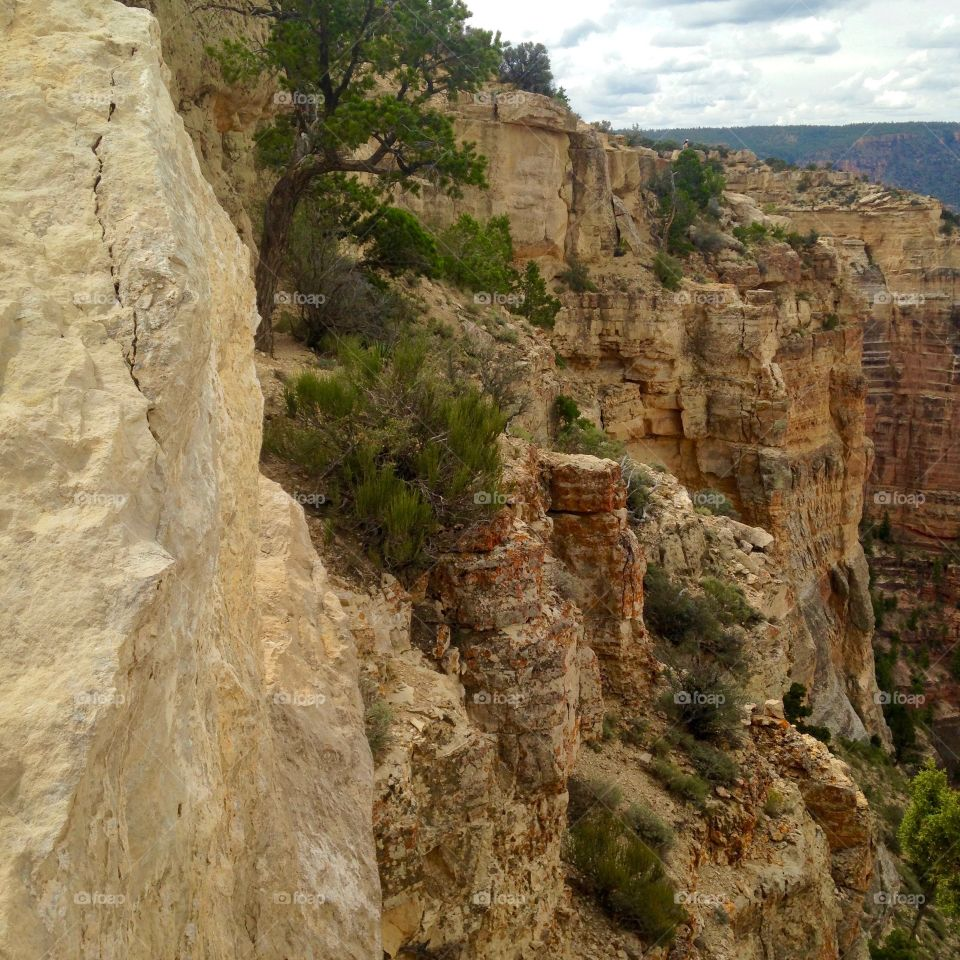 Travel to Grand Canyon