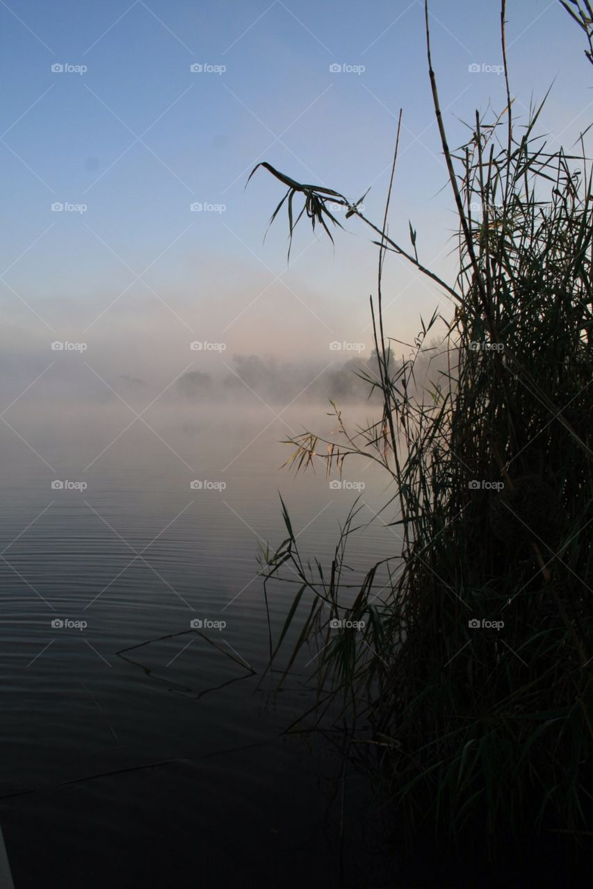Misty morning on the Vaal river