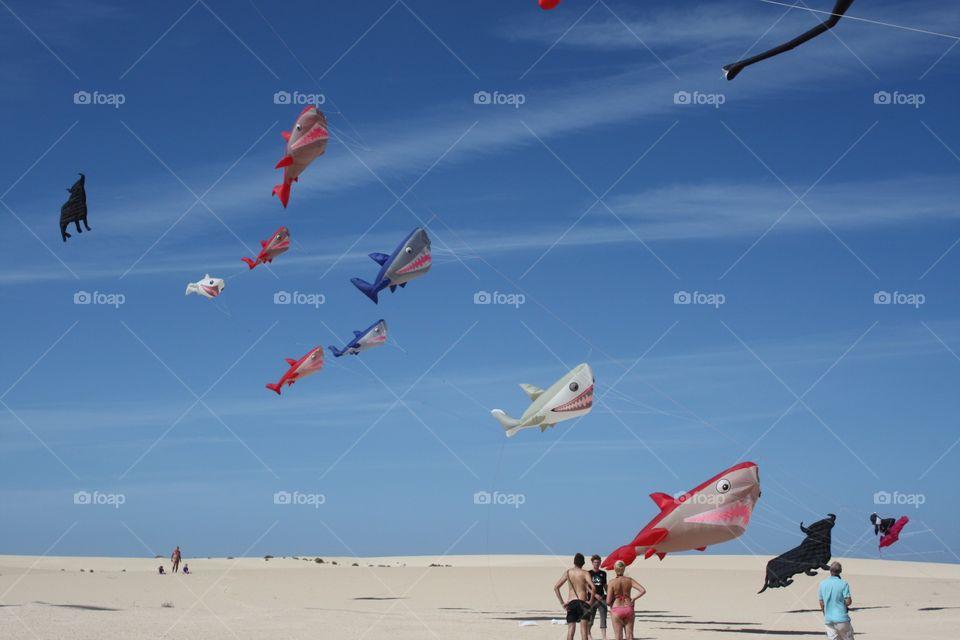 People enjoying kite flying at beach