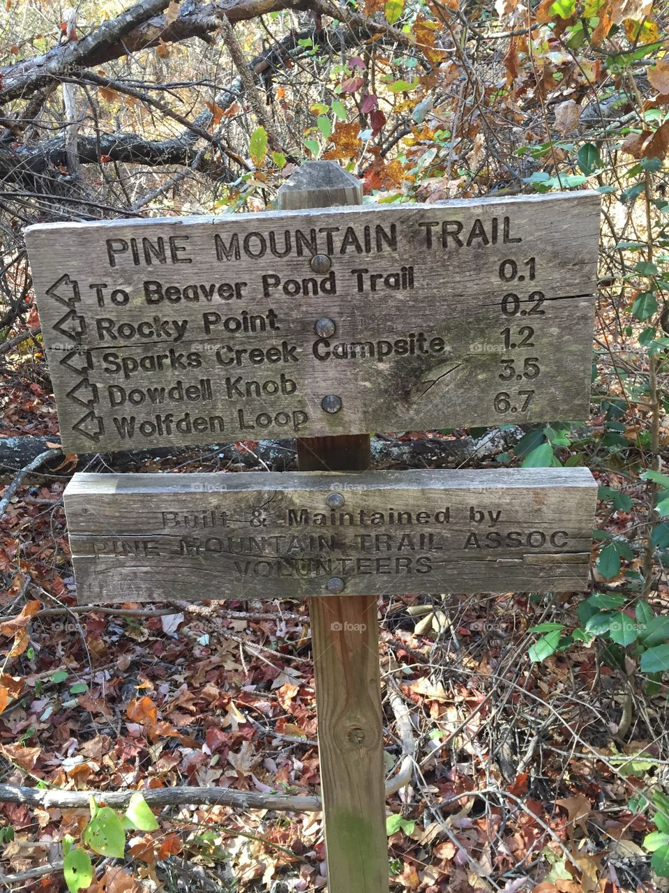 Old wooden trail sign with directions and what miles are to each destination, placed in the woods at a National Park in Georgia.
