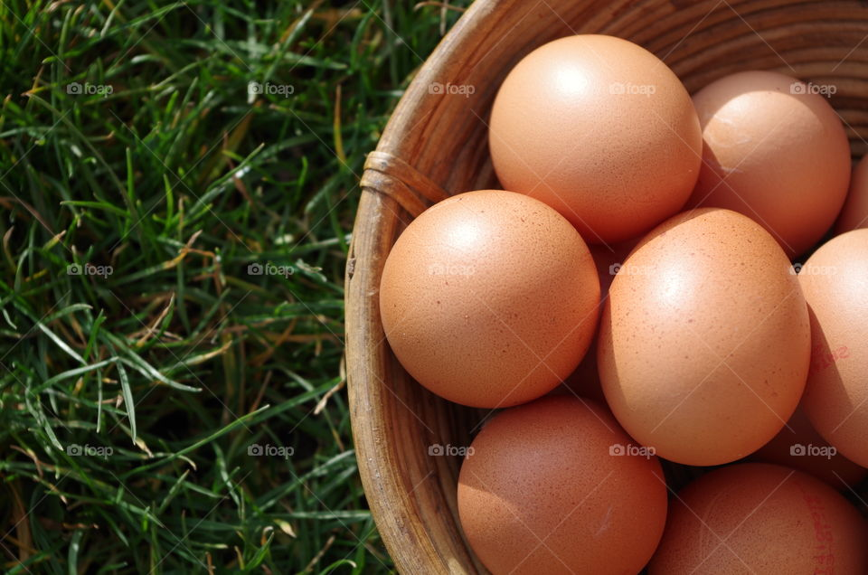Elevated view of eggs in basket