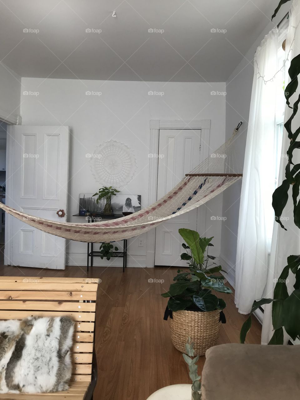 Comfy hamoc in a beautiful appartement with plants