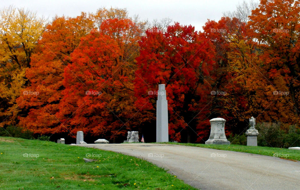 Trees burst with Fall colors at Hope Cemetery in Barre, Vermont.