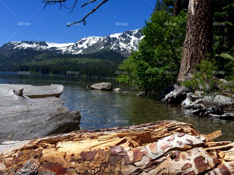 Fallen leaf lake, CA
