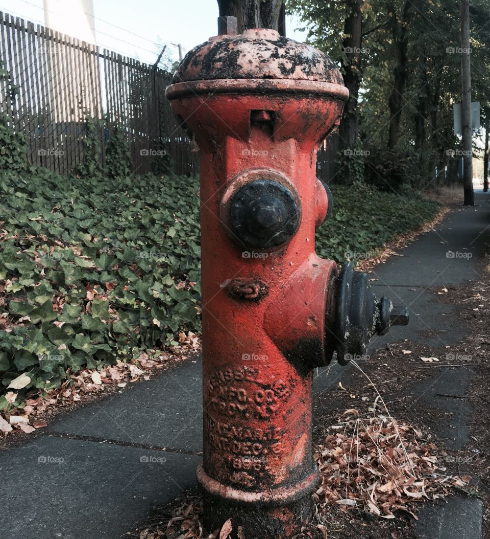 Puddle town hydrant