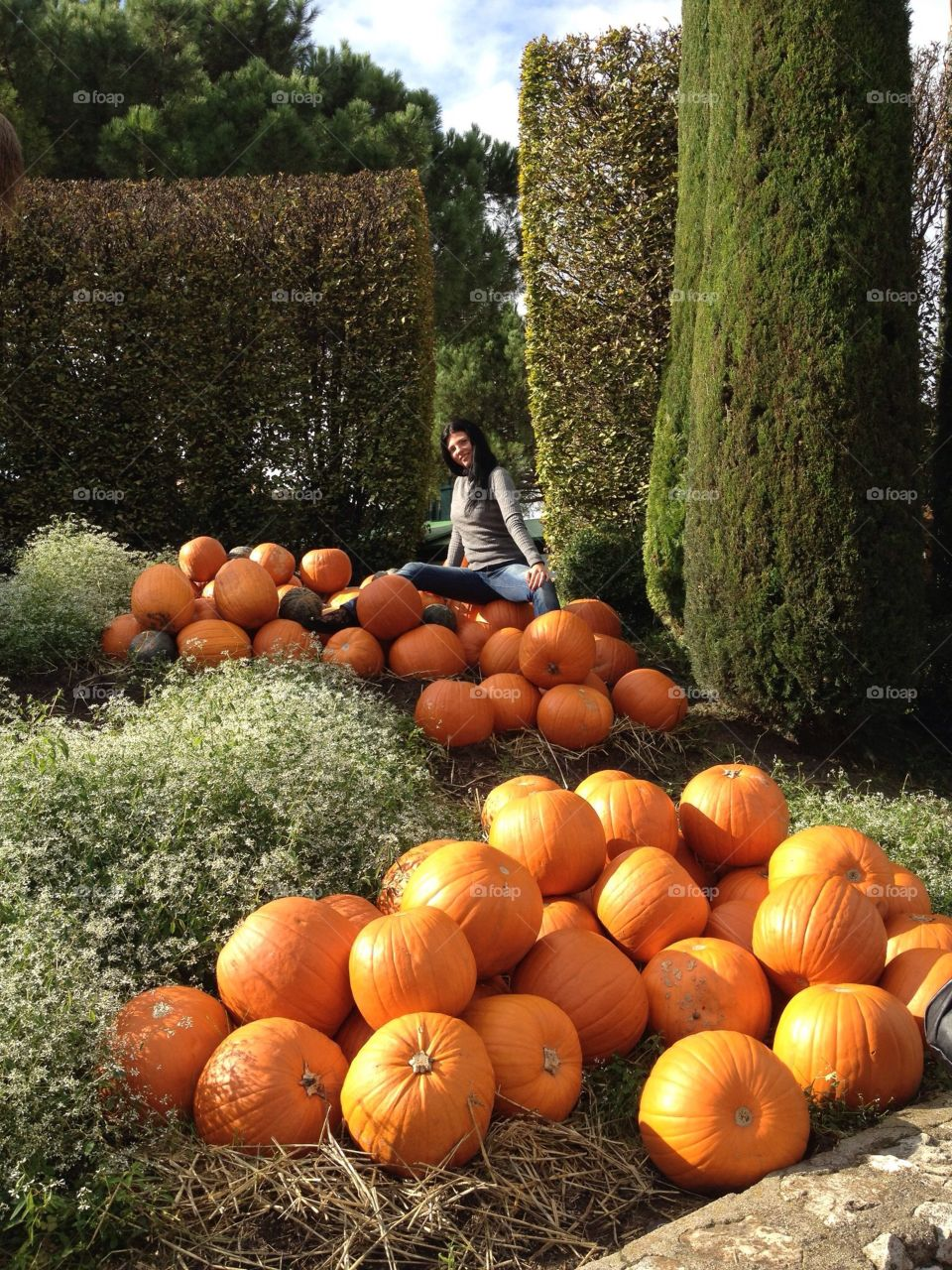 Sitting up the hall of pumpkins