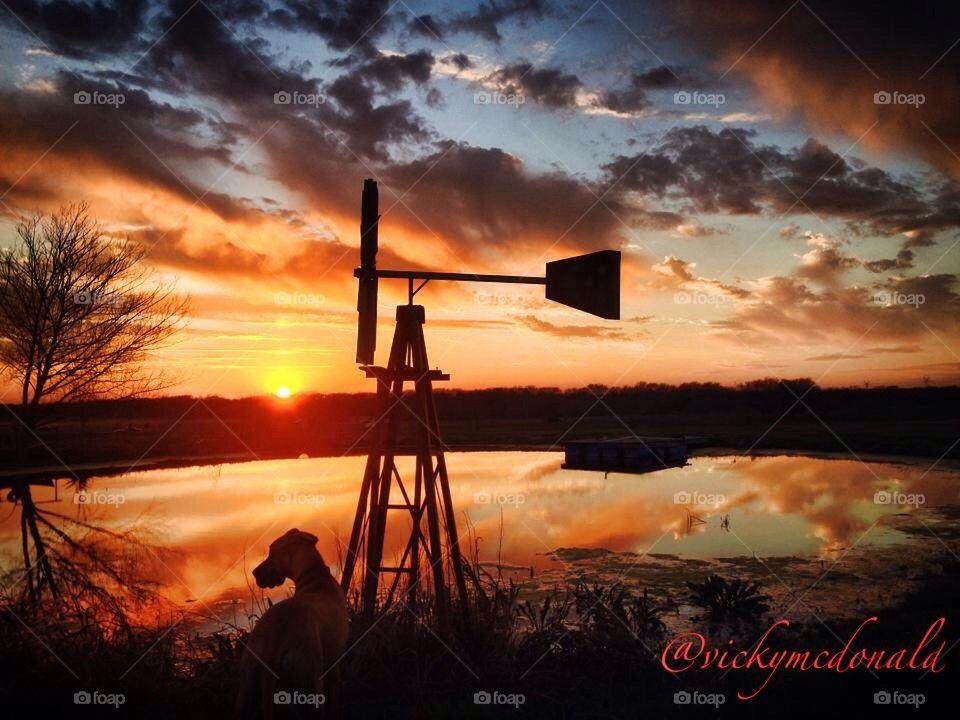 Sunset with Traka   vicky.mcdonald.946, windmill, pond, dog